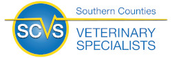 Southern Counties Veterinary Specialists